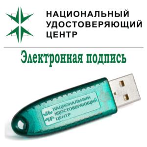 Срочный выпуск электронной подписи (ЭЦП)